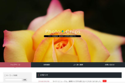 Photo Chips